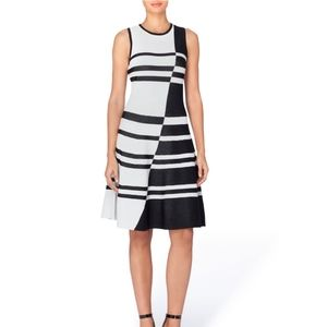 Knit Striped Jacquard Fit & Flare Sleeveless Dress